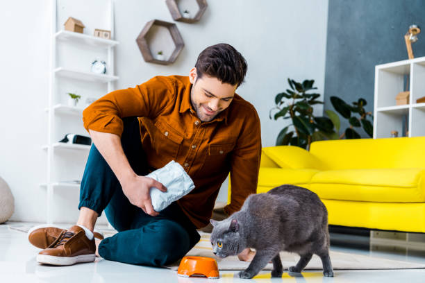 HOW TO FORCE-FEED A CAT?